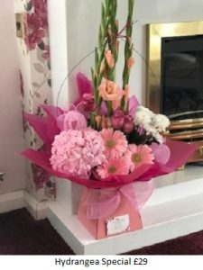 Hydrangea Special| Florists Widnes | Flowers by Carol