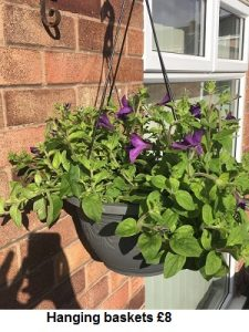 Hanging Basket| Florists Widnes | Flowers by Carol