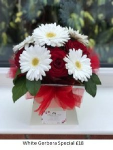 White Gerbera Special| Florists Widnes | Flowers by Carol